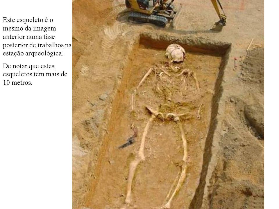 Este esqueleto é o mesmo da imagem anterior numa fase posterior de trabalhos na estação arqueológica. De notar que estes esqueletos têm mais de 10 met