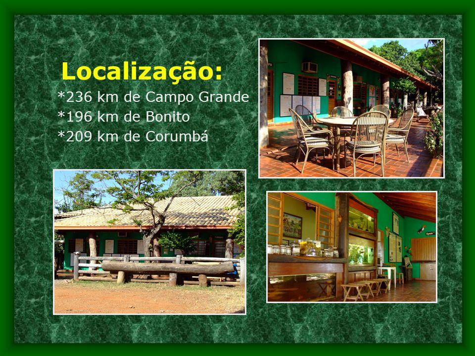 Localização: *236 km de Campo Grande *196 km de Bonito *209 km de Corumbá