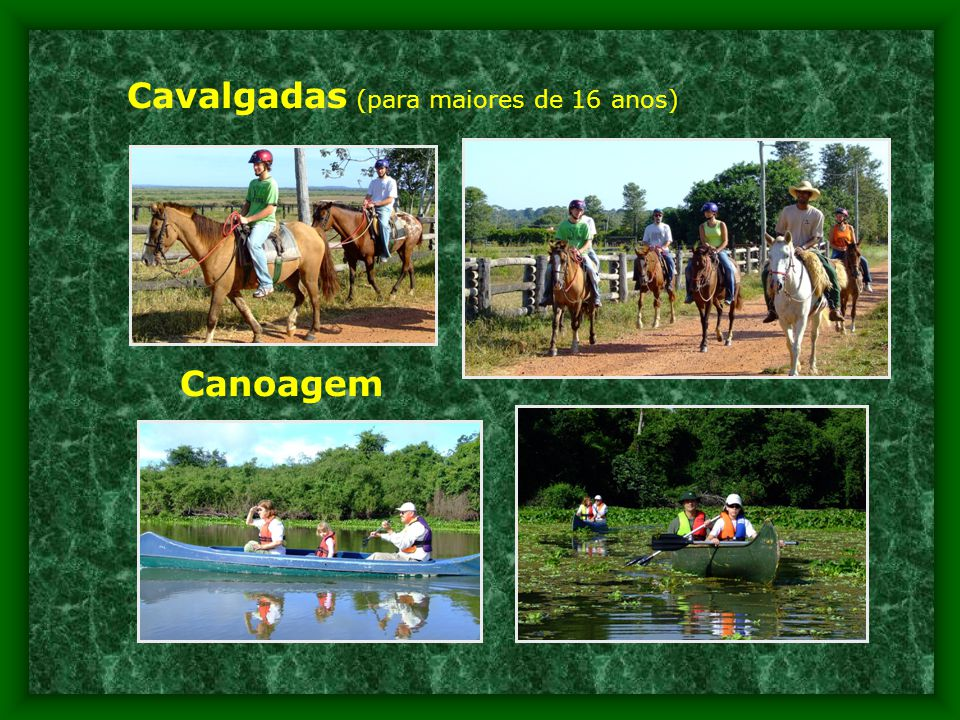 Cavalgadas (para maiores de 16 anos) Canoagem