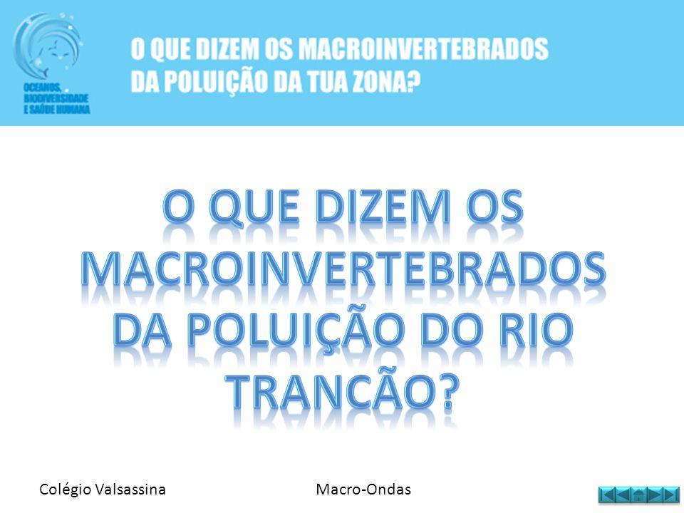 Colégio ValsassinaMacro-Ondas