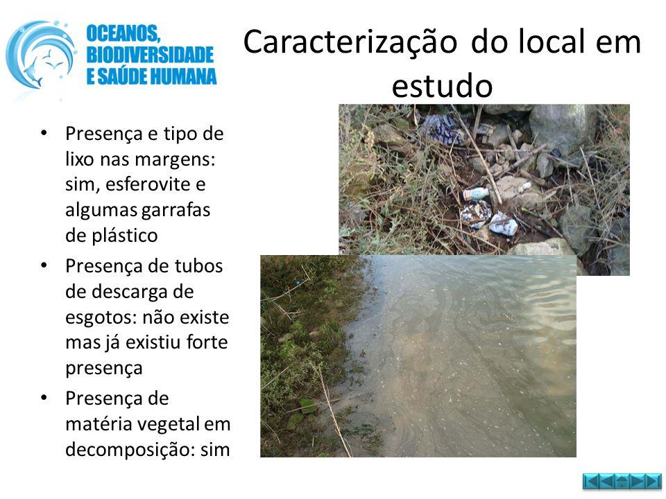 • Presença e tipo de lixo nas margens: sim, esferovite e algumas garrafas de plástico • Presença de tubos de descarga de esgotos: não existe mas já ex