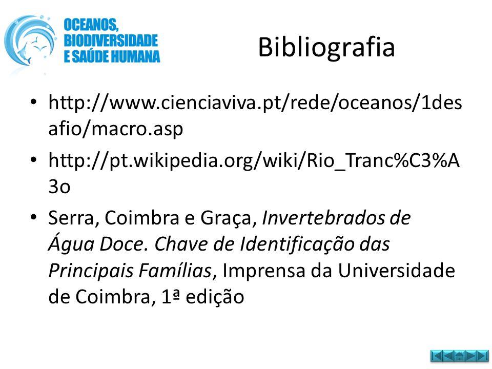Bibliografia • http://www.cienciaviva.pt/rede/oceanos/1des afio/macro.asp • http://pt.wikipedia.org/wiki/Rio_Tranc%C3%A 3o • Serra, Coimbra e Graça, I