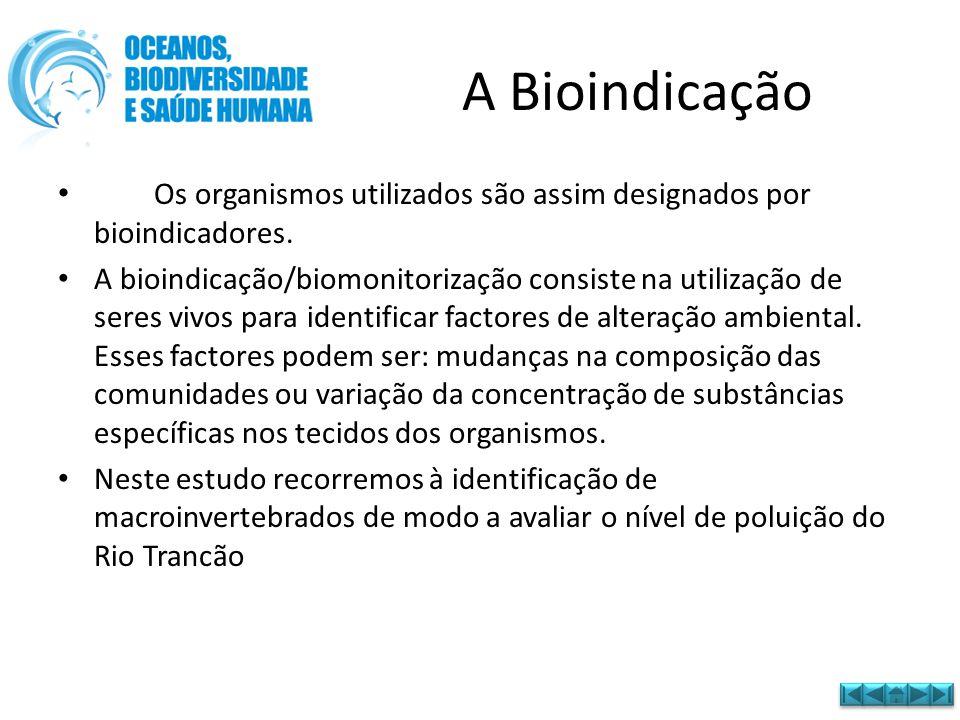 A Bioindicação • Os organismos utilizados são assim designados por bioindicadores. • A bioindicação/biomonitorização consiste na utilização de seres v