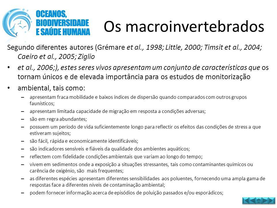• Transferir os macroinvertebrados para os frascos • Analisar à lupa binocular os indivíduos Procedimentos da Análise da amostra no laboratório