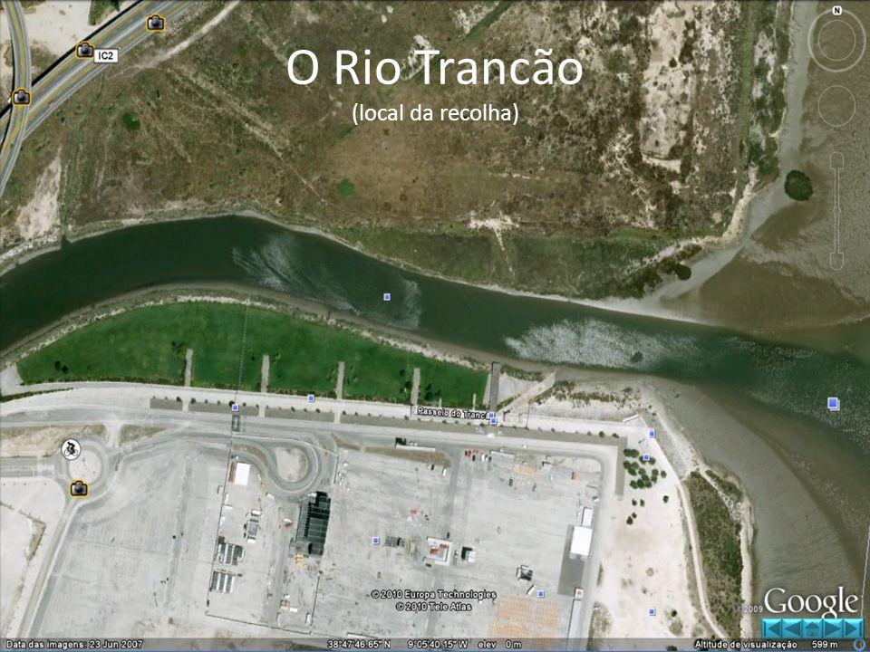O Rio Trancão (local da recolha)