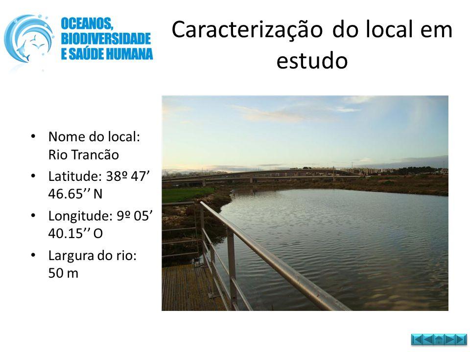 Caracterização do local em estudo • Nome do local: Rio Trancão • Latitude: 38º 47' 46.65'' N • Longitude: 9º 05' 40.15'' O • Largura do rio: 50 m