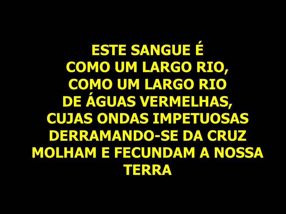 ESTE SANGUE É COMO UM LARGO RIO, COMO UM LARGO RIO DE ÁGUAS VERMELHAS, CUJAS ONDAS IMPETUOSAS DERRAMANDO-SE DA CRUZ MOLHAM E FECUNDAM A NOSSA TERRA