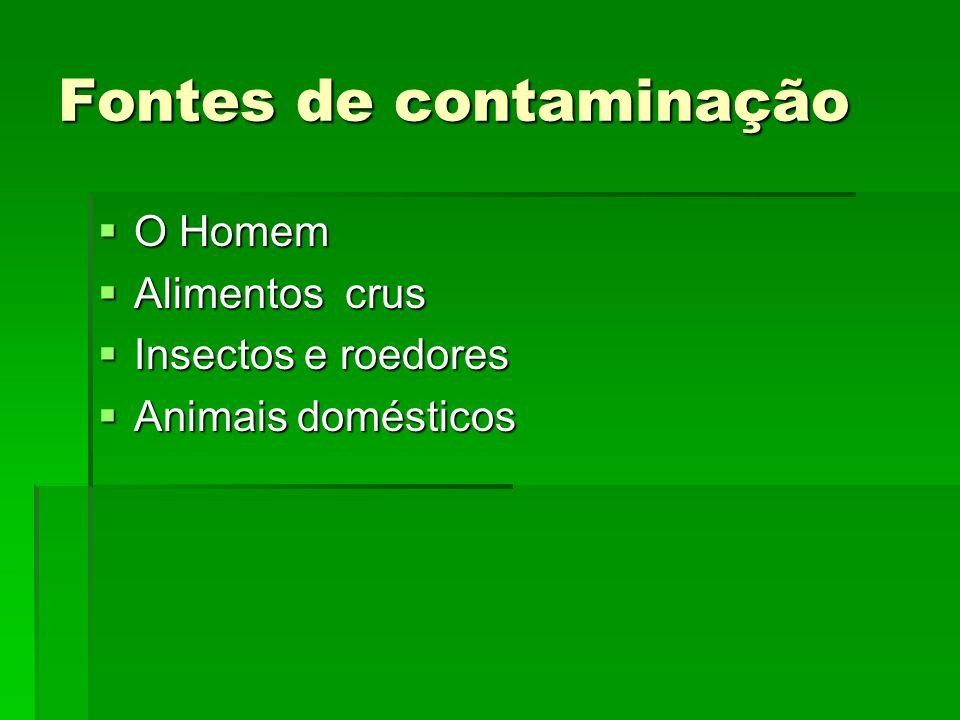 Fontes de contaminação  O Homem  Alimentos crus  Insectos e roedores  Animais domésticos