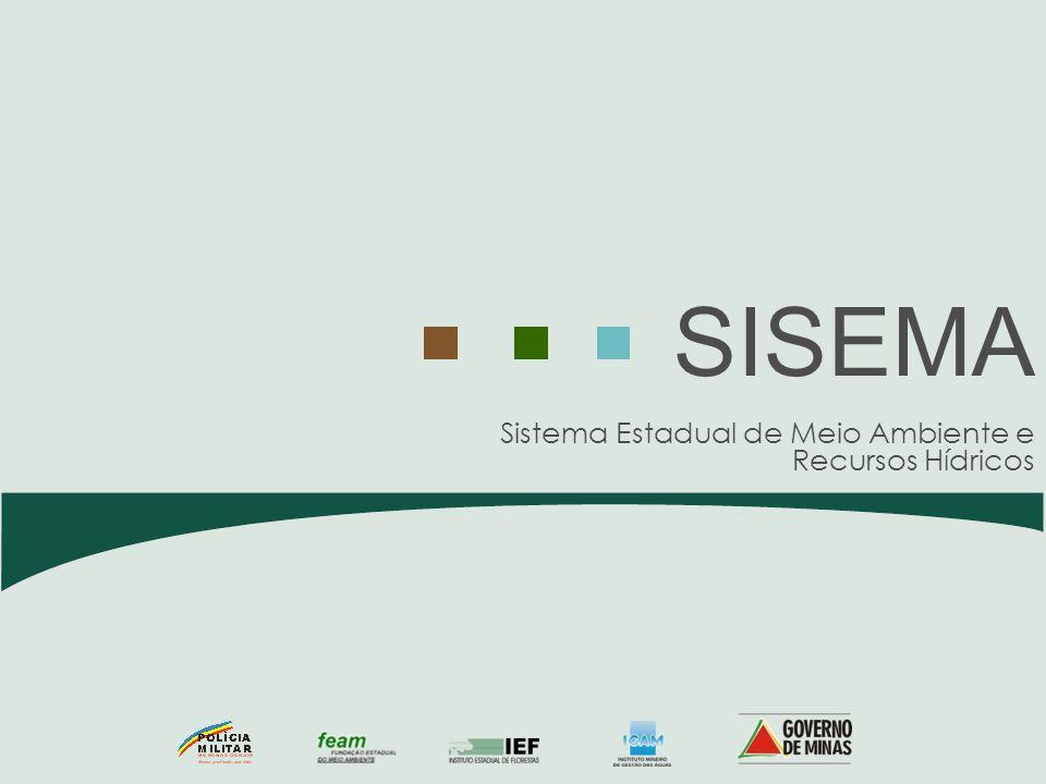 Palestrante: Danilo Vieira Júnior – Secretário-adjunto de Estado de Meio Ambiente e Desenvolvimento Sustentável.