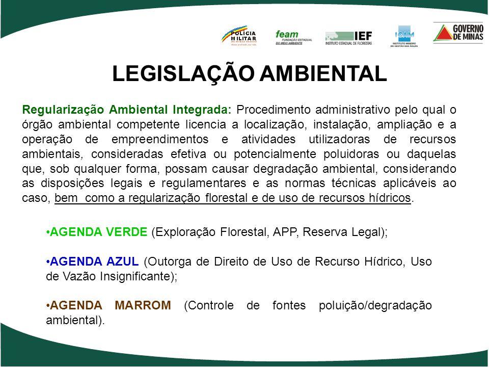 LEGISLAÇÃO AMBIENTAL •AGENDA VERDE (Exploração Florestal, APP, Reserva Legal); •AGENDA AZUL (Outorga de Direito de Uso de Recurso Hídrico, Uso de Vazã