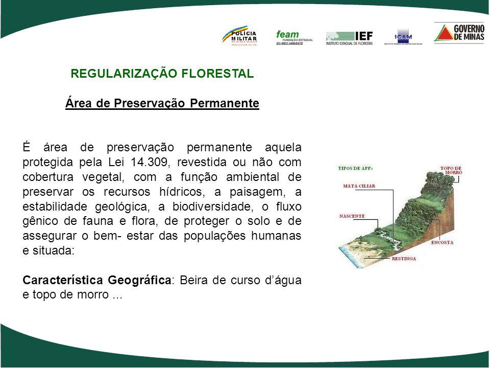 REGULARIZAÇÃO FLORESTAL Área de Preservação Permanente É área de preservação permanente aquela protegida pela Lei 14.309, revestida ou não com cobertu