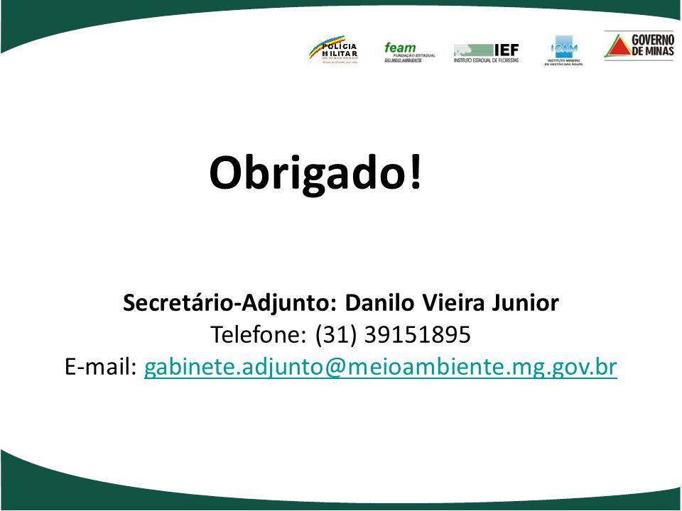 Obrigado! Secretário-Adjunto: Danilo Vieira Junior Telefone: (31) 39151895 E-mail: gabinete.adjunto@meioambiente.mg.gov.brgabinete.adjunto@meioambient