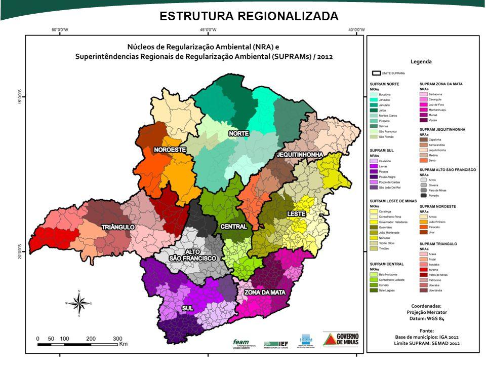 ESTRUTURA REGIONALIZADA