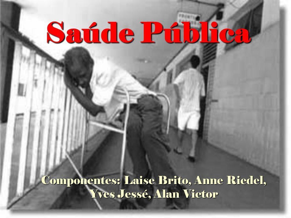 Saúde Pública Componentes: Laise Brito, Anne Riedel, Yves Jessé, Alan Victor