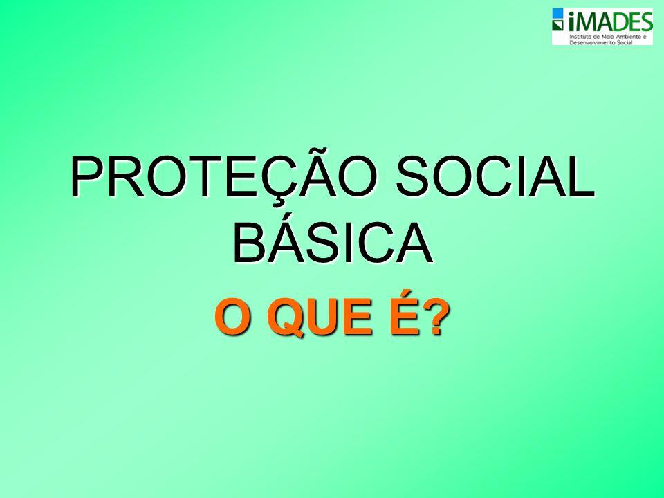 PROTEÇÃO SOCIAL BÁSICA O QUE É?