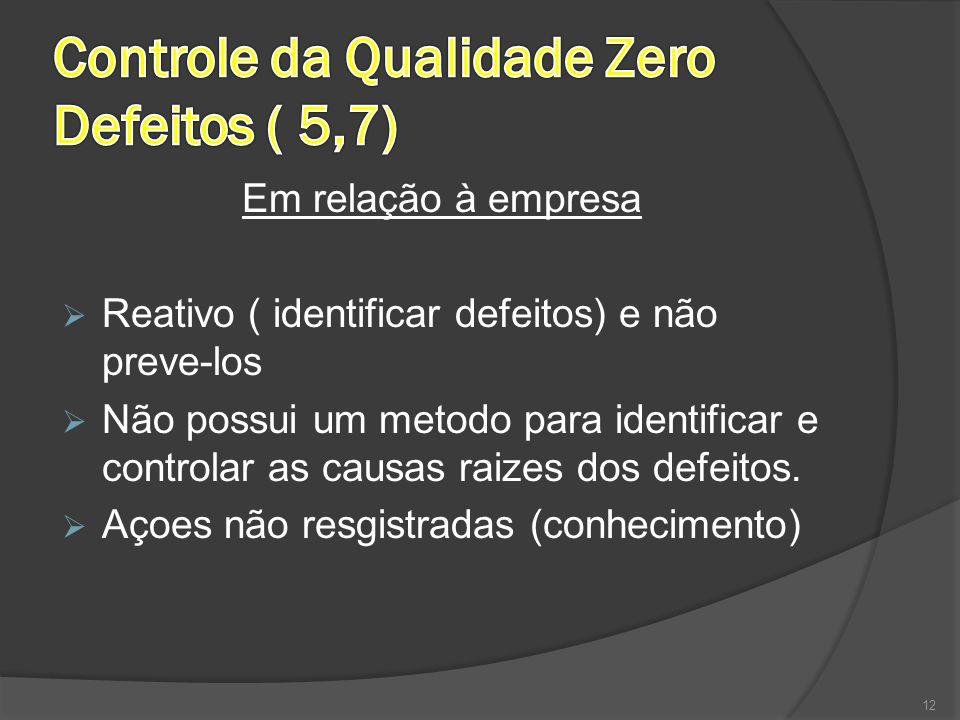 Em relação à empresa  Reativo ( identificar defeitos) e não preve-los  Não possui um metodo para identificar e controlar as causas raizes dos defeit