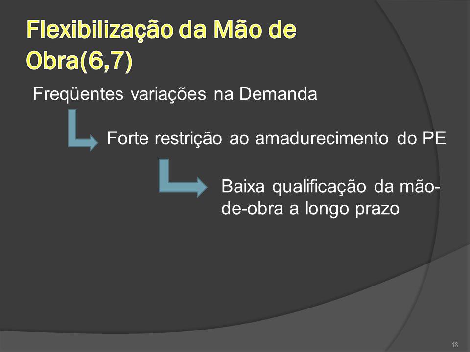 18 Freqüentes variações na Demanda Forte restrição ao amadurecimento do PE Baixa qualificação da mão- de-obra a longo prazo