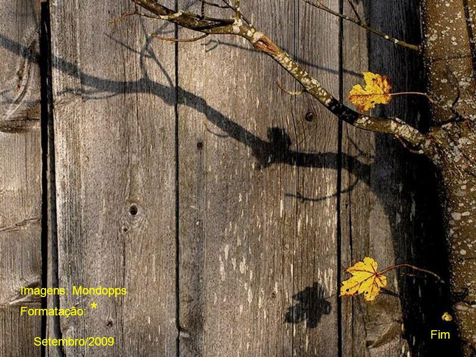 A vida no coração manifesta-se por uma vibração. Somente você pode penetrar no santuário!!!