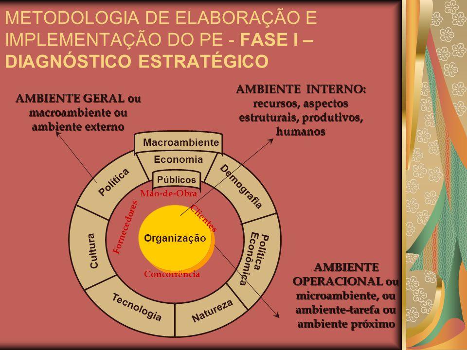 Organização Política Economia Demografia Tecnologia Natureza Cultura Política Econômica Públicos Macroambiente AMBIENTE GERAL ou macroambiente ou ambi