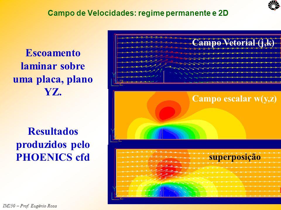IM250 – Prof. Eugênio Rosa Campo de Velocidades: regime permanente e 2D Escoamento laminar sobre uma placa, plano YZ. Resultados produzidos pelo PHOEN