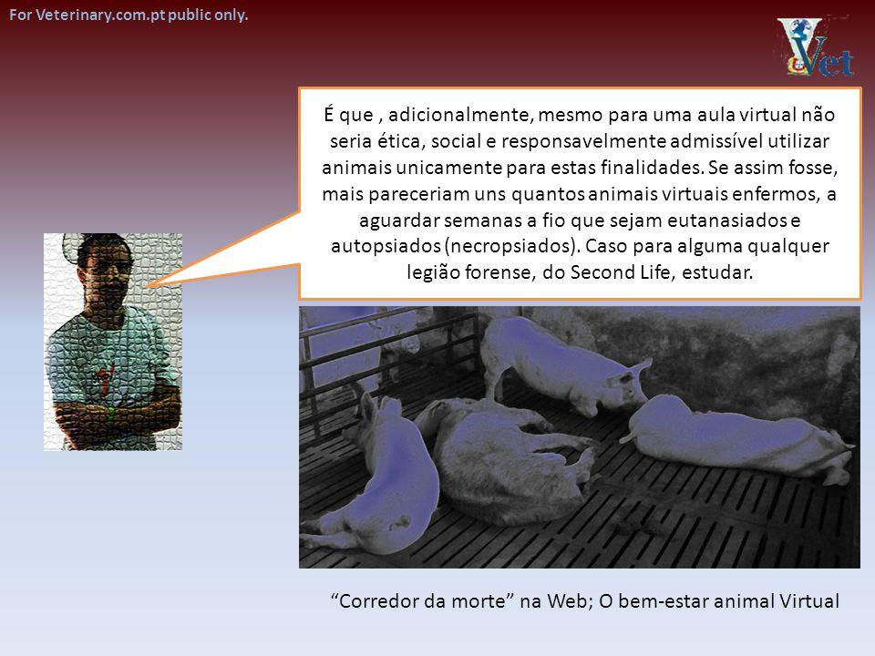 É que, adicionalmente, mesmo para uma aula virtual não seria ética, social e responsavelmente admissível utilizar animais unicamente para estas finali