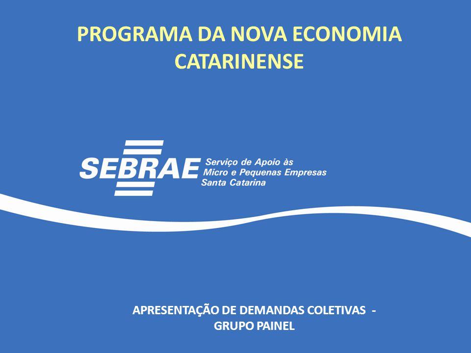 PROGRAMA DA NOVA ECONOMIA CATARINENSE APRESENTAÇÃO DE DEMANDAS COLETIVAS - GRUPO PAINEL