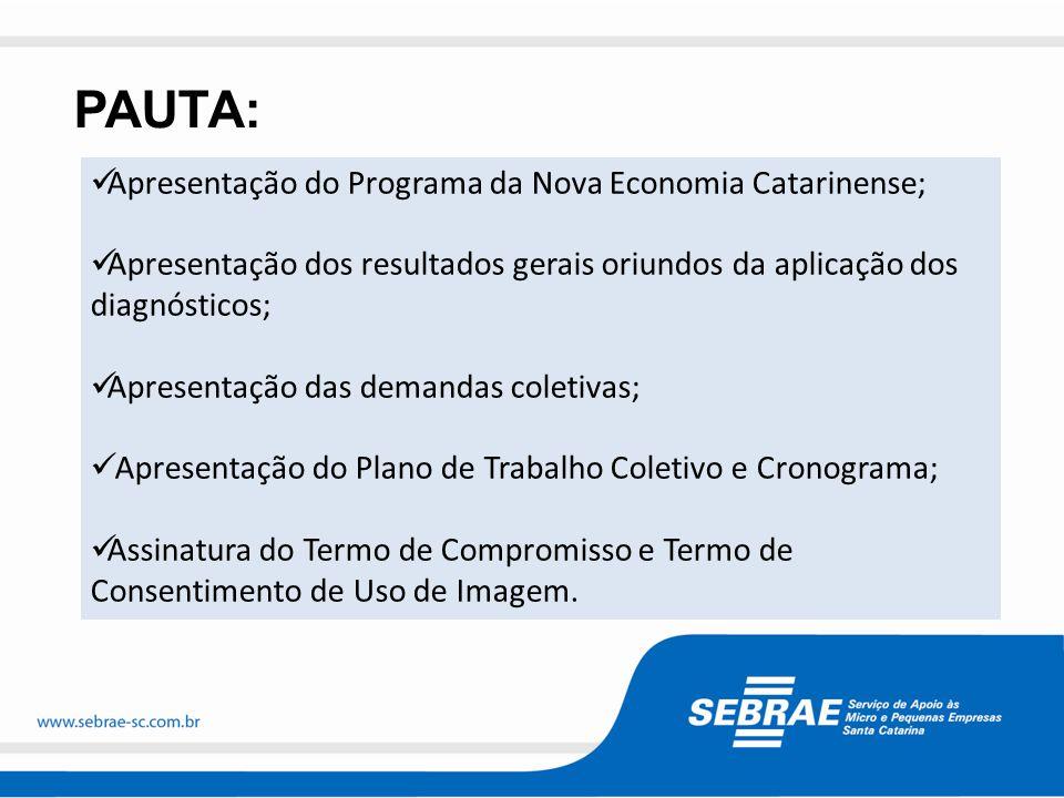 Fortalecimento de Polos Industriais Juro Zero Economia Verde Territórios Baixo IDH PROGRAMA DA NOVA ECONOMIA CATARINENSE