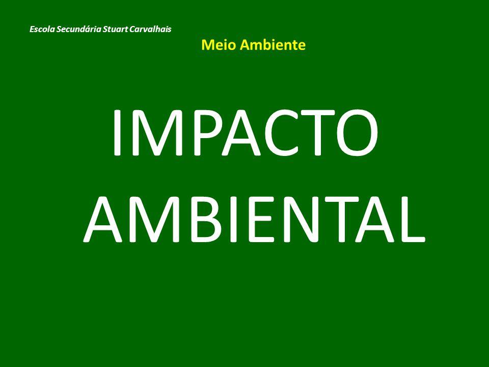 Impacto Ambiental é o efeito causado por qualquer alteração benéfica...
