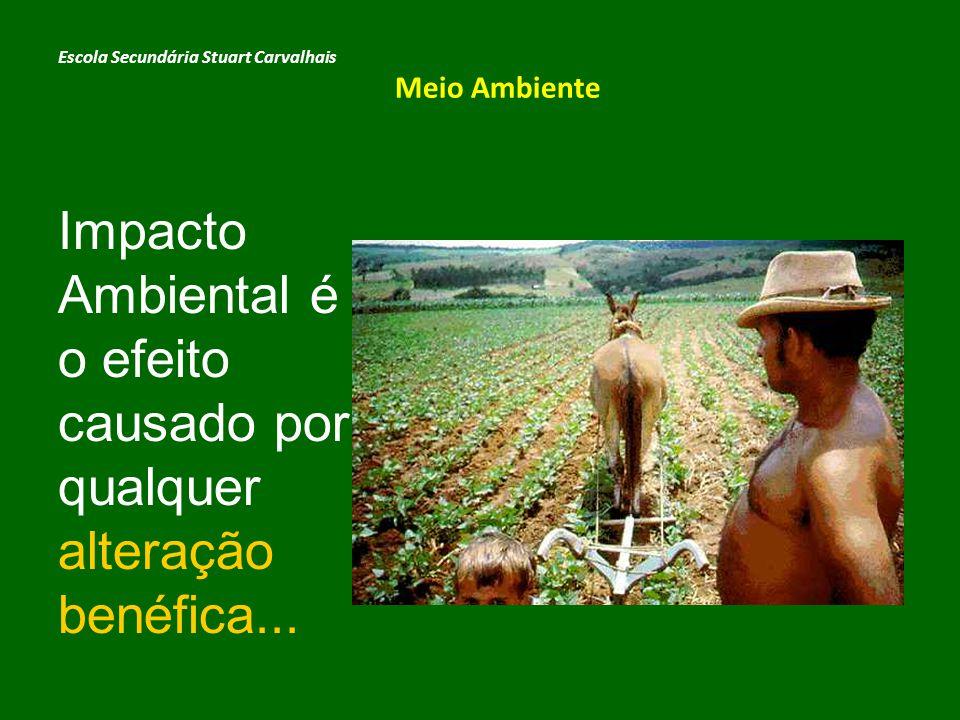 … ou adversa causada pelas actividades humanas ou naturais no meio ambiente.