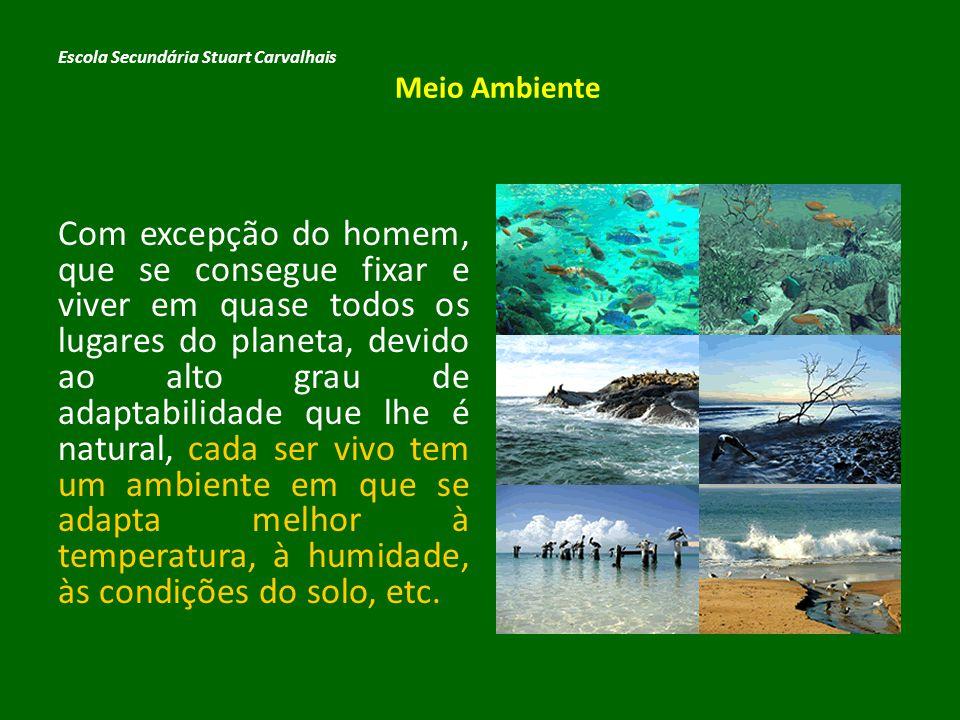 Esse ambiente ideal para cada ser vivo constitui o seu habitat e deve ser preservado, para que a biosfera possa subsistir.