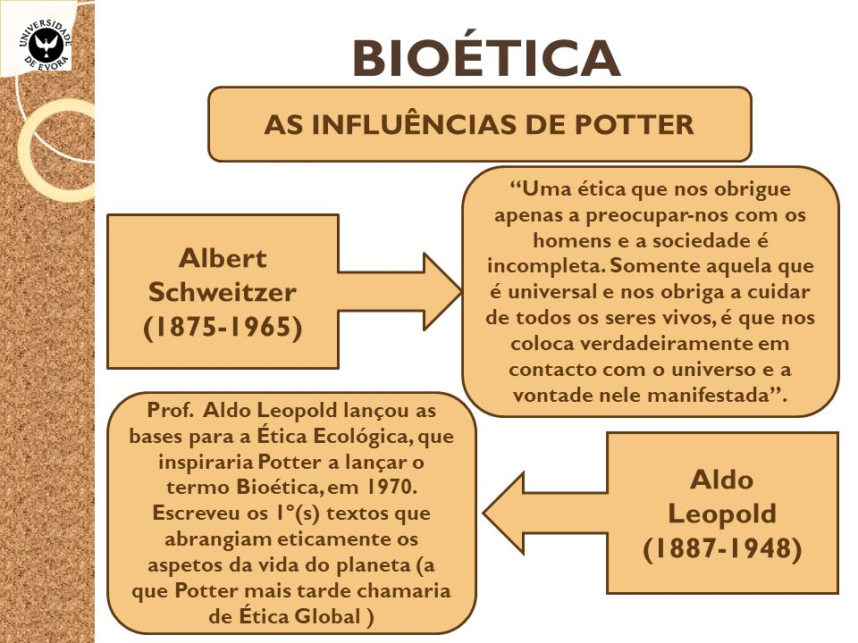"""BIOÉTICA AS INFLUÊNCIAS DE POTTER Albert Schweitzer (1875-1965) """"Uma ética que nos obrigue apenas a preocupar-nos com os homens e a sociedade é incomp"""