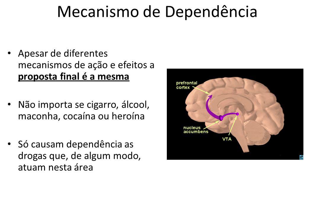 Mecanismo de Dependência • Apesar de diferentes mecanismos de ação e efeitos a proposta final é a mesma • Não importa se cigarro, álcool, maconha, coc