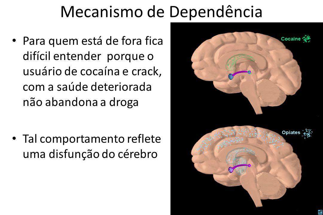 Mecanismo de Dependência • Para quem está de fora fica difícil entender porque o usuário de cocaína e crack, com a saúde deteriorada não abandona a dr