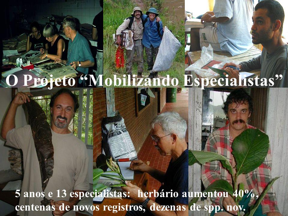 O Projeto Mobilizando Especialistas 5 anos e 13 especialistas: herbário aumentou 40%, centenas de novos registros, dezenas de spp.