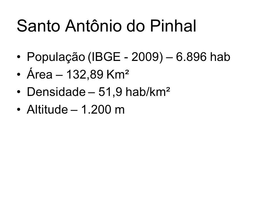 Santo Antônio do Pinhal •População (IBGE - 2009) – 6.896 hab •Área – 132,89 Km² •Densidade – 51,9 hab/km² •Altitude – 1.200 m