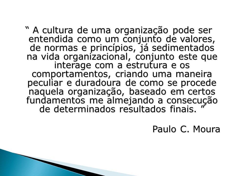 """"""" A cultura de uma organização pode ser entendida como um conjunto de valores, de normas e princípios, já sedimentados na vida organizacional, conjunt"""