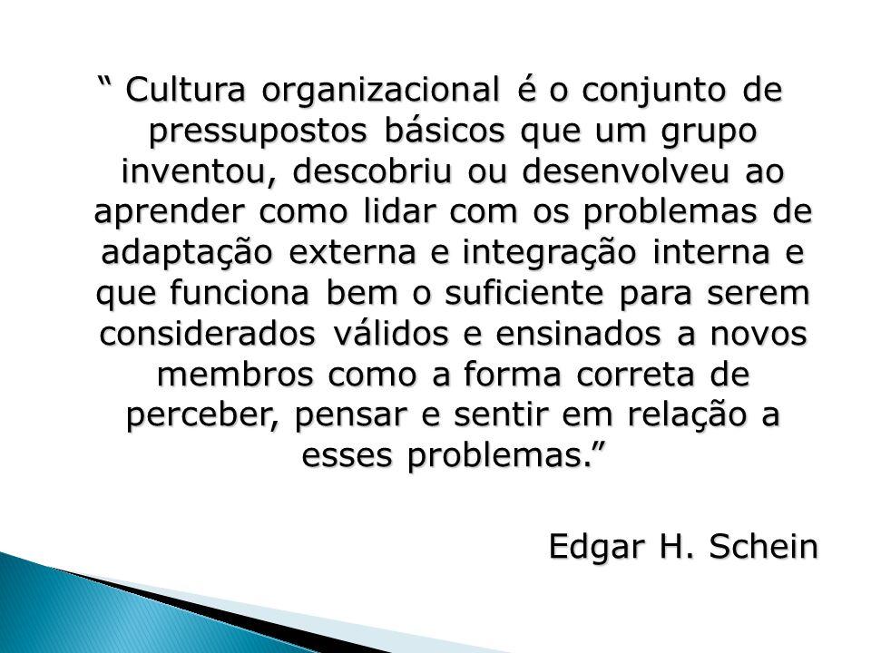 """"""" Cultura organizacional é o conjunto de pressupostos básicos que um grupo inventou, descobriu ou desenvolveu ao aprender como lidar com os problemas"""