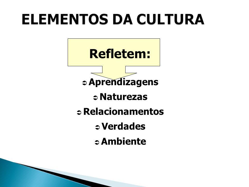 Refletem:  Aprendizagens  Naturezas  Relacionamentos  Verdades  Ambiente