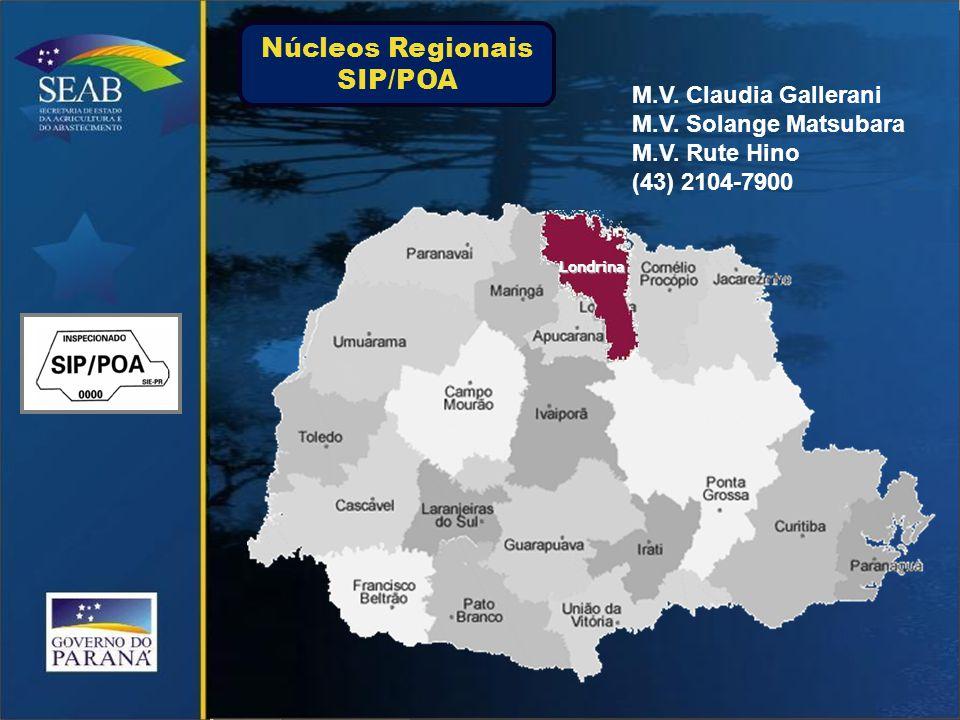Londrina M.V.Claudia Gallerani M.V. Solange Matsubara M.V.