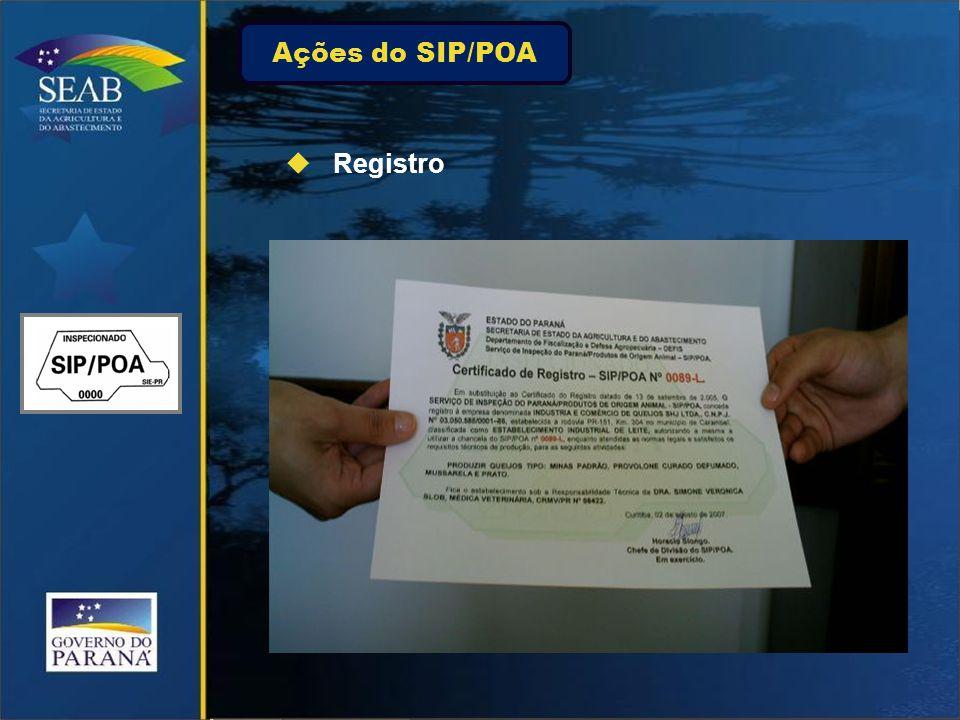 Ações do SIP/POA  Registro