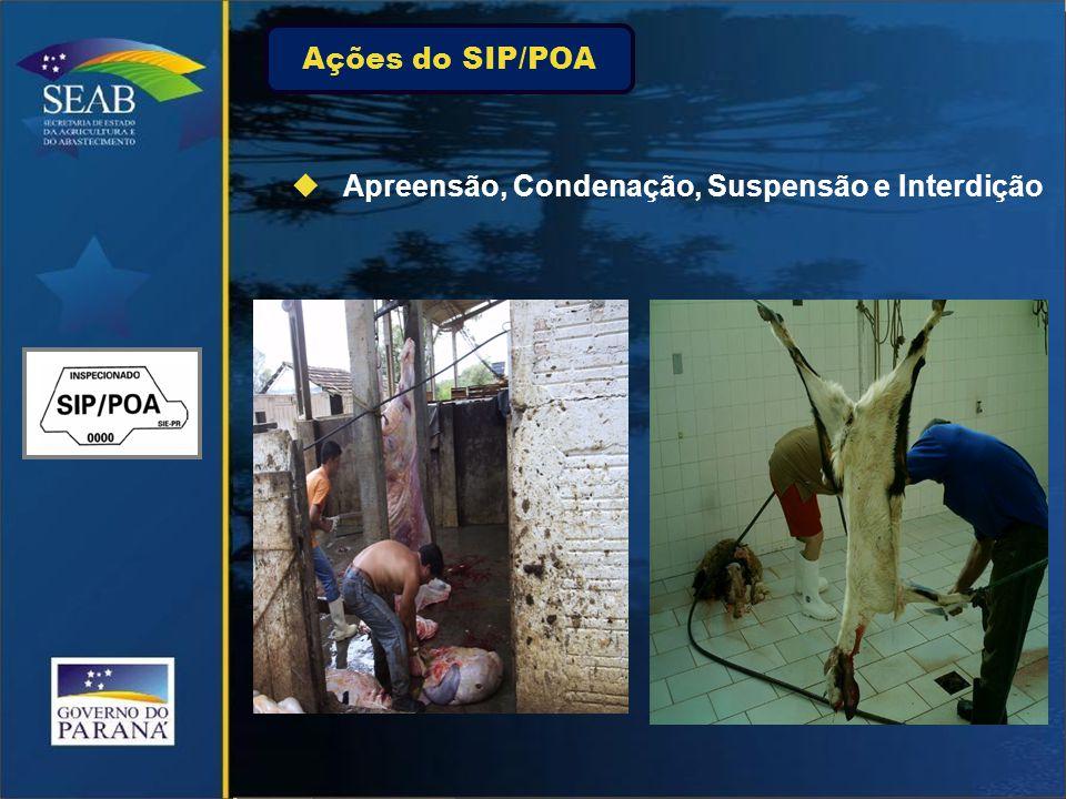 Ações do SIP/POA  Apreensão, Condenação, Suspensão e Interdição