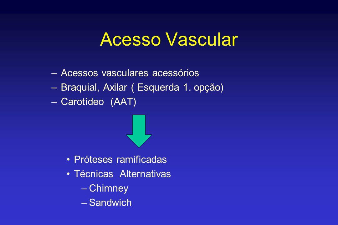 Acesso Vascular –Acessos vasculares acessórios –Braquial, Axilar ( Esquerda 1. opção) –Carotídeo (AAT) •Próteses ramificadas •Técnicas Alternativas –C