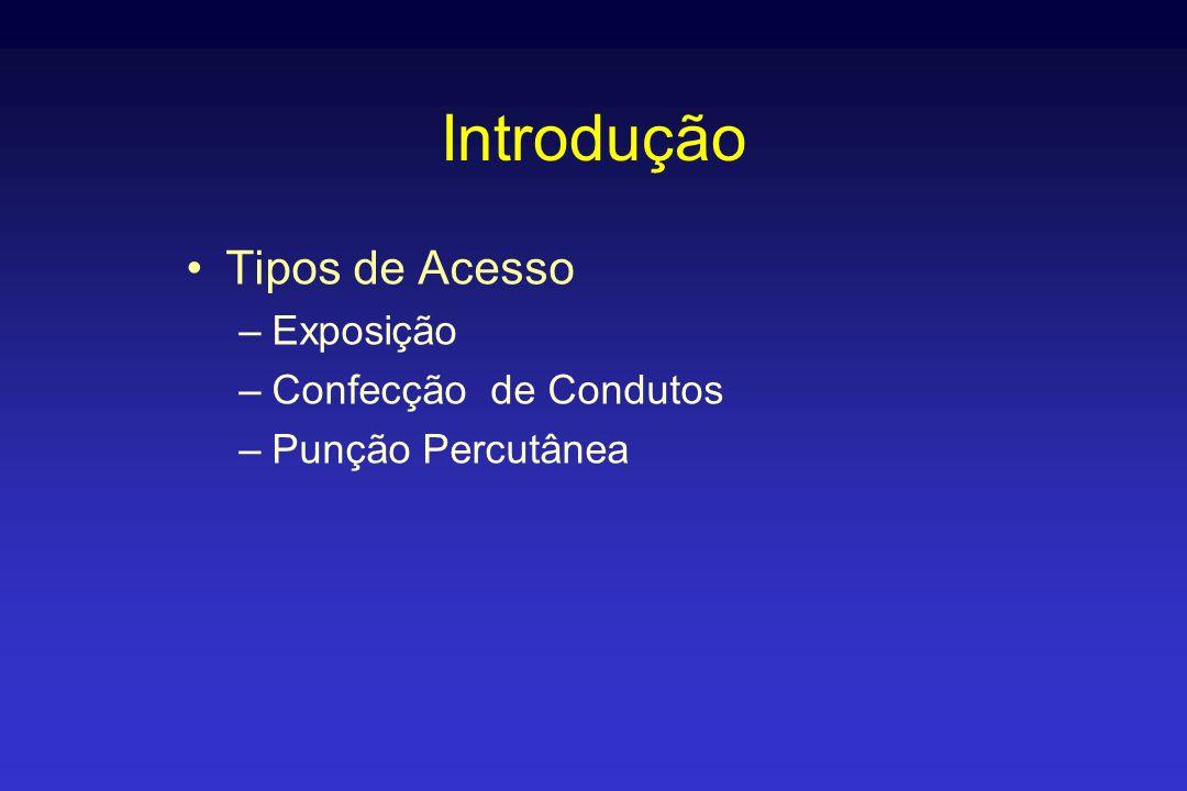 Introdução •Tipos de Acesso –Exposição –Confecção de Condutos –Punção Percutânea