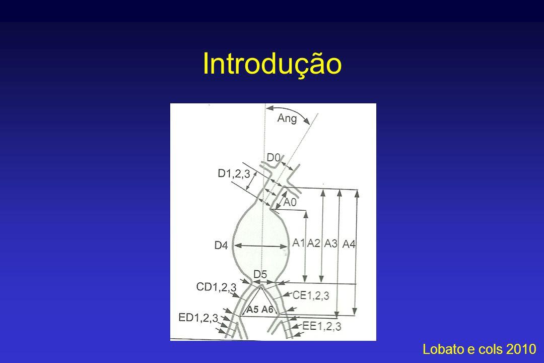 Introdução Lobato e cols 2010