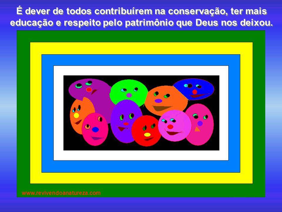 É dever de todos contribuírem na conservação, ter mais educação e respeito pelo patrimônio que Deus nos deixou. www.revivendoanatureza.com