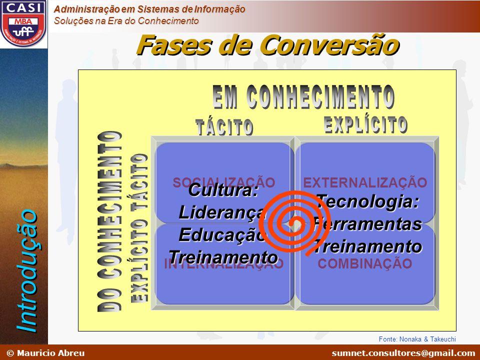 sumnet@microlink.com.br © Mauricio Abreusumnet.consultores@gmail.com Administração em Sistemas de Informação Soluções na Era do Conhecimento SOCIALIZA