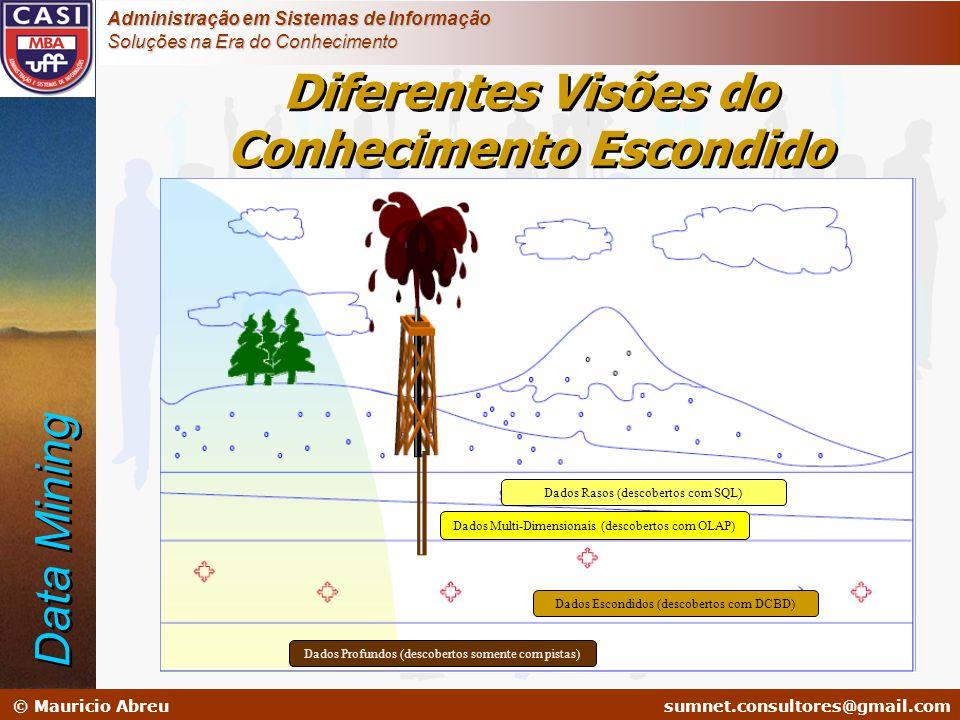 sumnet@microlink.com.br © Mauricio Abreusumnet.consultores@gmail.com Administração em Sistemas de Informação Soluções na Era do Conhecimento Diferente