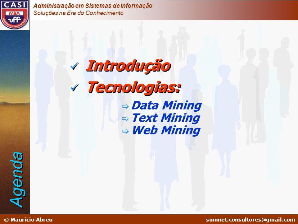 sumnet@microlink.com.br © Mauricio Abreusumnet.consultores@gmail.com Administração em Sistemas de Informação Soluções na Era do Conhecimento  Introdu