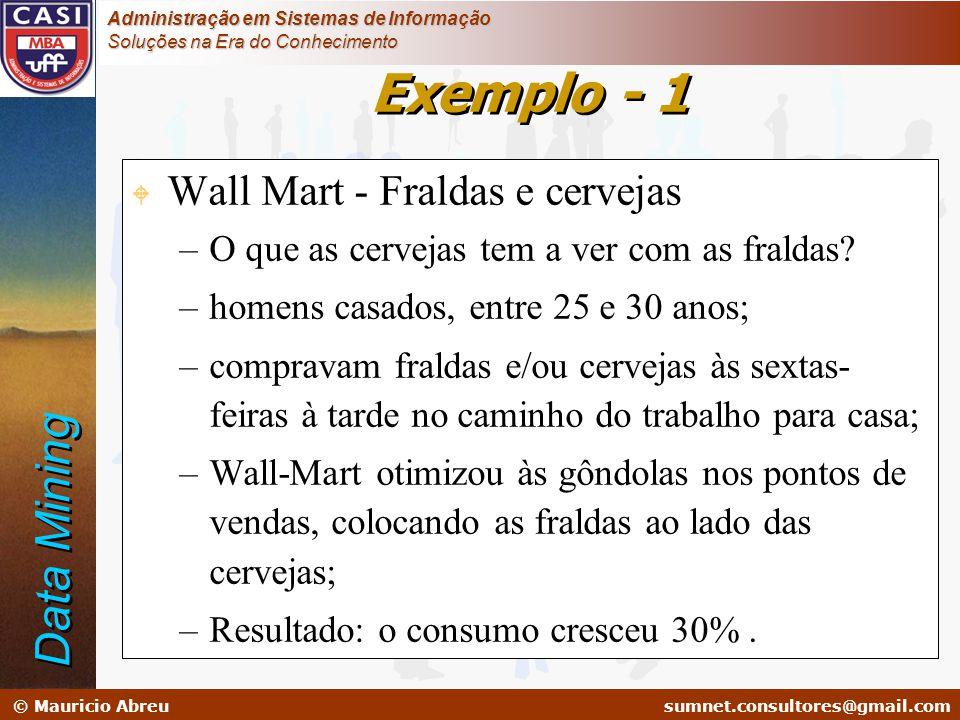 sumnet@microlink.com.br © Mauricio Abreusumnet.consultores@gmail.com Administração em Sistemas de Informação Soluções na Era do Conhecimento W Wall Ma