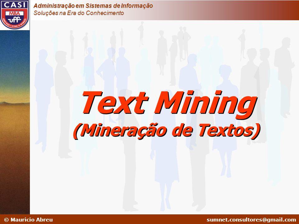 sumnet@microlink.com.br © Mauricio Abreusumnet.consultores@gmail.com Administração em Sistemas de Informação Soluções na Era do Conhecimento Text Mini